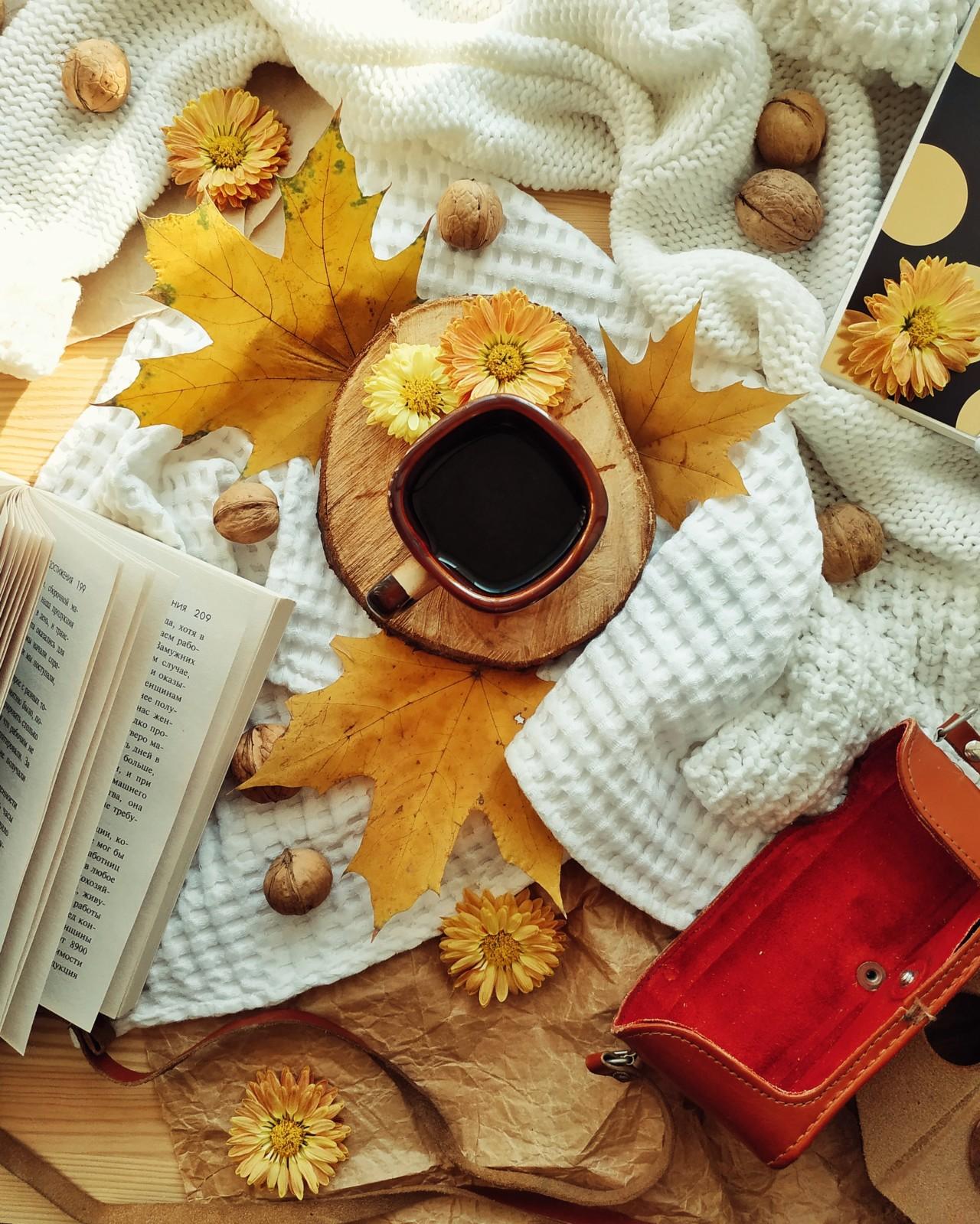 Осенняя фотография для Инстаграм