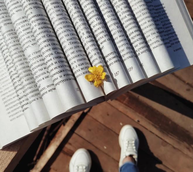 Книга и цветок