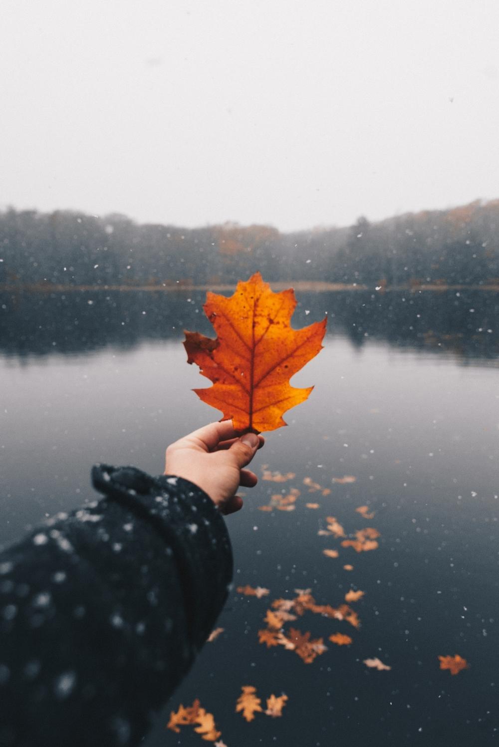 Осенняя фотография без лица
